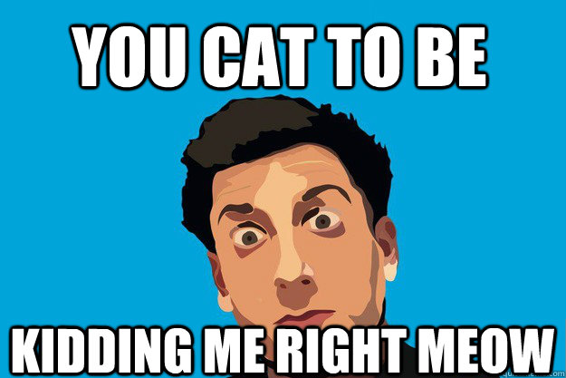 YOU CAT TO BE KIDDING ME RIGHT MEOW - YOU CAT TO BE KIDDING ME RIGHT MEOW  PrankvsPrank