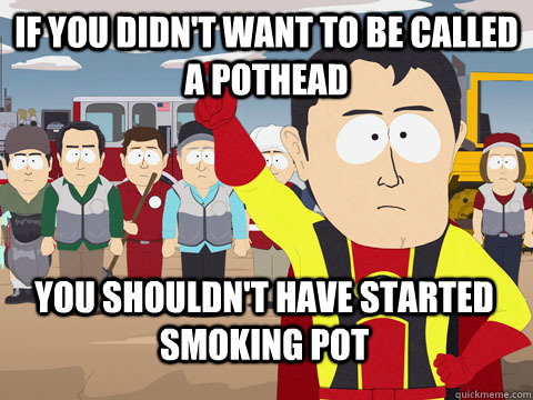 If you didn't want to be called a pothead you shouldn't have started smoking pot - If you didn't want to be called a pothead you shouldn't have started smoking pot  Captain Hindsight