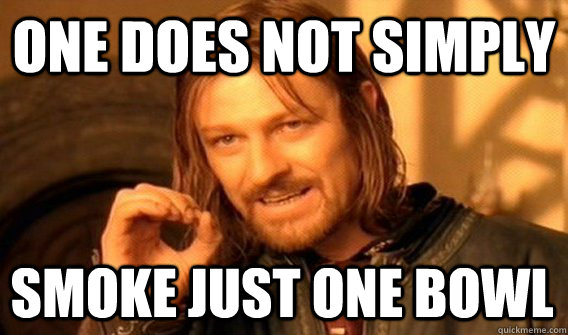 ONE DOES NOT SIMPLY SMOKE JUST ONE BOWL