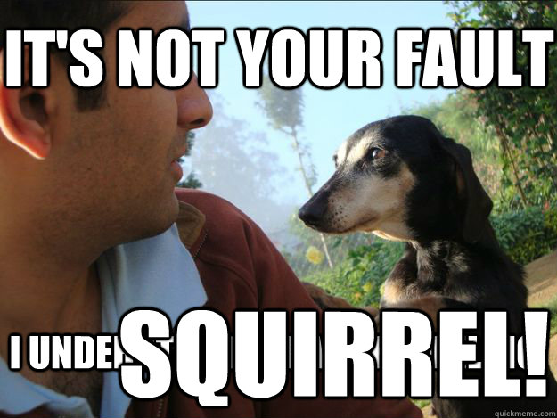 it's not your fault i understand what the feeling squirrel!