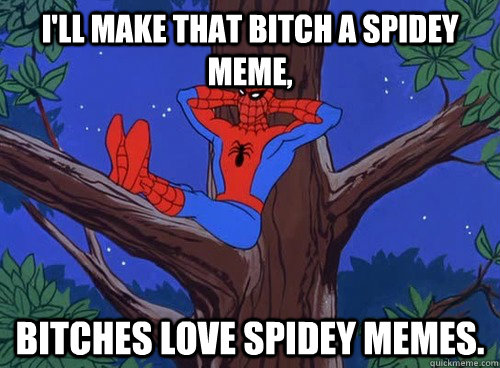 I'll make that bitch a spidey meme, bitches love spidey memes. - I'll make that bitch a spidey meme, bitches love spidey memes.  Spider man