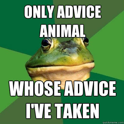 Only advice animal whose advice I've taken - Only advice animal whose advice I've taken  Foul Bachelor Frog