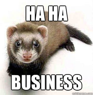 HA HA BUSINESS - HA HA BUSINESS  Logical Fallacy Ferret