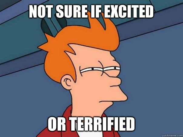 Not sure if excited Or terrified  Futurama Fry