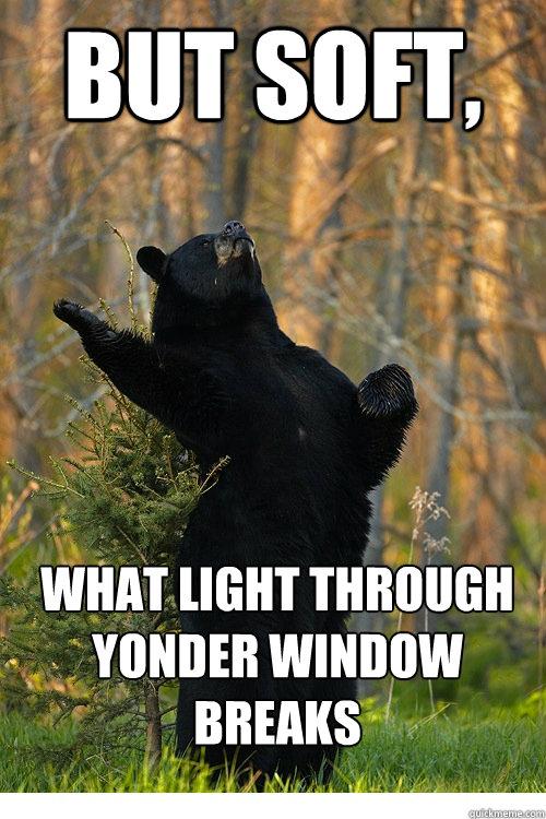 BUT SOFT, WHAT LIGHT THROUGH YONDER WINDOW BREAKS  Fabulous Bear