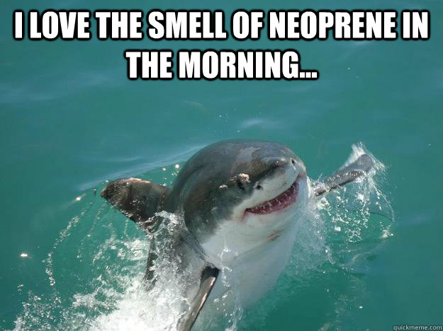 I love the smell of neoprene in the morning...   Misunderstood Shark