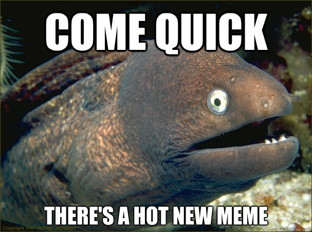 Come quick There's a hot new meme  Bad Joke Eel