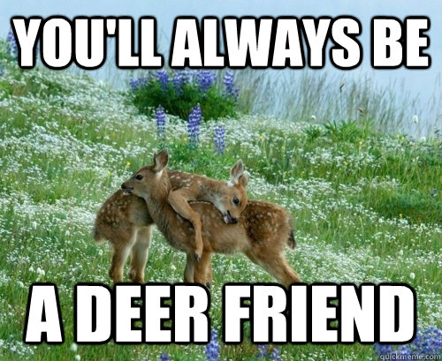 you'll always be a deer friend - you'll always be a deer friend  deer friend