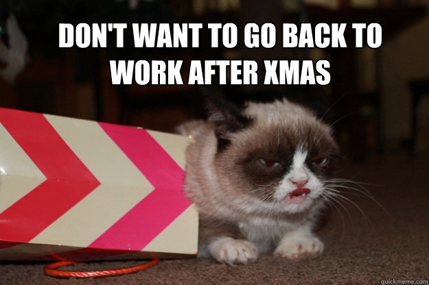 Don't want to go back to work after xmas - Don't want to go back to work after xmas  angry grump