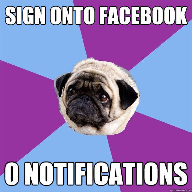 sign onto facebook 0 notifications  Lonely Pug