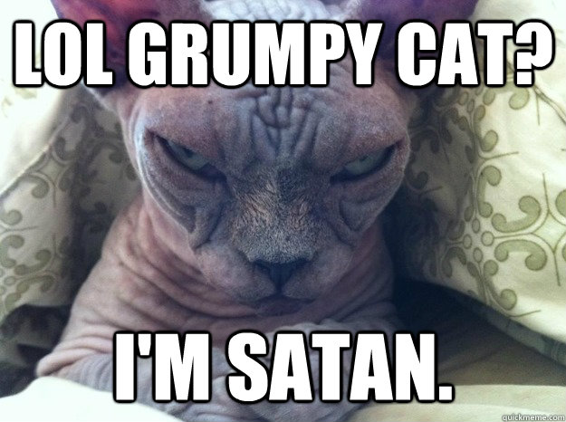 lol grumpy cat? i'm satan.