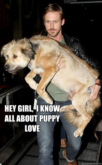 hey girl,  i know all about puppy love
