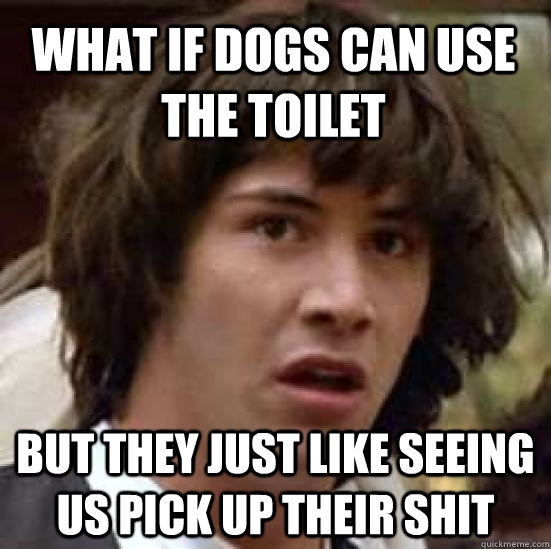 what if dogs can use the toilet but they just like seeing us pick up their shit - what if dogs can use the toilet but they just like seeing us pick up their shit  conspiracy keanu