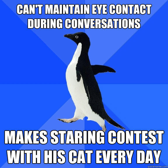 Can't maintain eye contact during conversations makes staring contest with his cat every day - Can't maintain eye contact during conversations makes staring contest with his cat every day  Socially Awkward Penguin