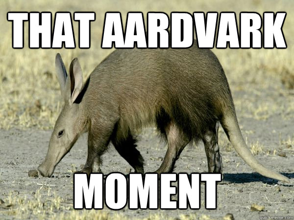 that aardvark moment