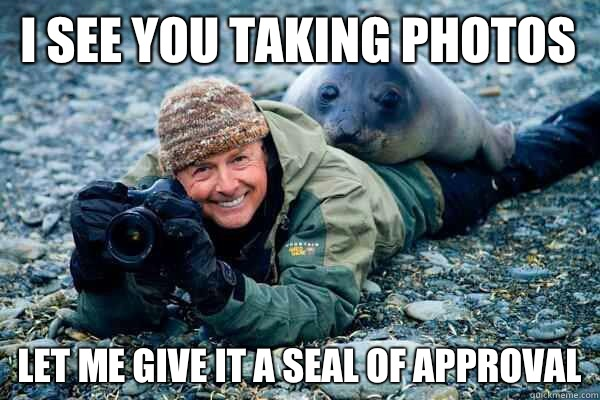 I see you taking photos  Let me give it a seal of approval