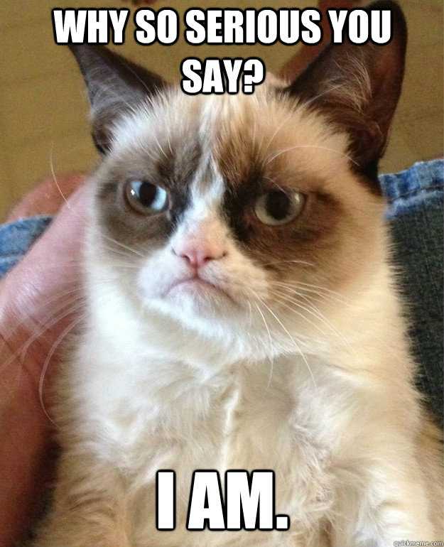 why so serious you say i am grumpy cat quickmeme