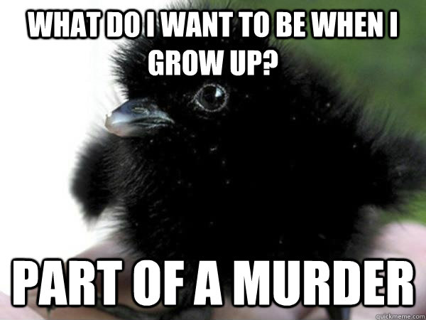 What do I want to be when I grow up? PART OF A MURDER - What do I want to be when I grow up? PART OF A MURDER  Baby crow