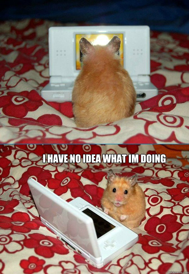 I have no Idea what im doing -  I have no Idea what im doing  bad computer hamster