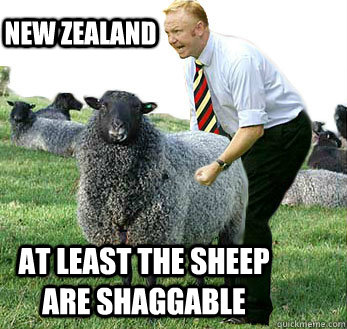 new zealand dating site sheepdog