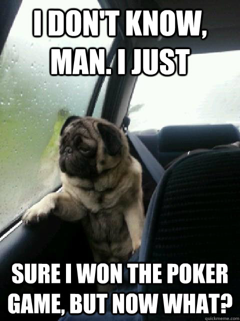 i don't know, man. i just Sure i won the poker game, but now what? - i don't know, man. i just Sure i won the poker game, but now what?  Introspective Pug