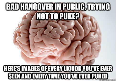 bad hangover in public, trying not to puke? here's images of every liquor you've ever seen and every time you've ever puked - bad hangover in public, trying not to puke? here's images of every liquor you've ever seen and every time you've ever puked  Scumbag Brain