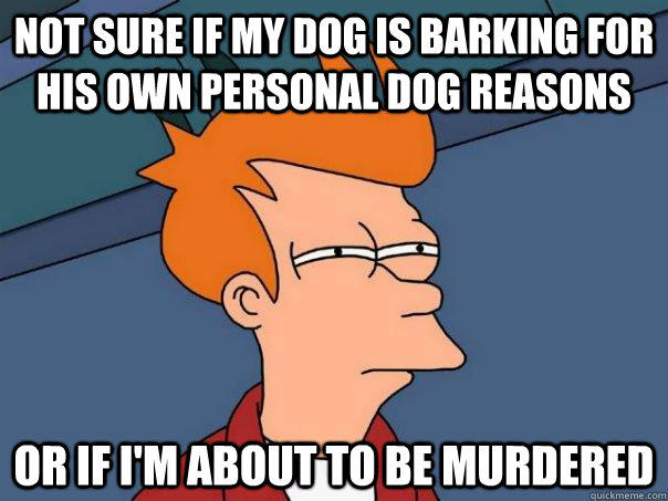 Not sure if my dog is barking for his own personal dog reasons Or if I'm about to be murdered