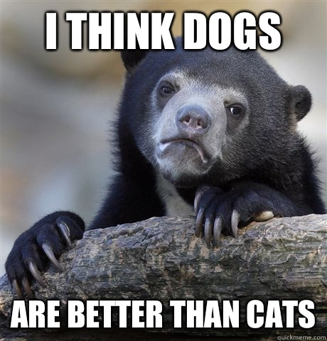 I think dogs Are better than cats - I think dogs Are better than cats  Confession Bear