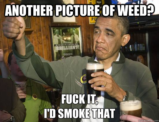 Another picture of weed? Fuck it, I'd smoke that - Another picture of weed? Fuck it, I'd smoke that  Upvoting Obama