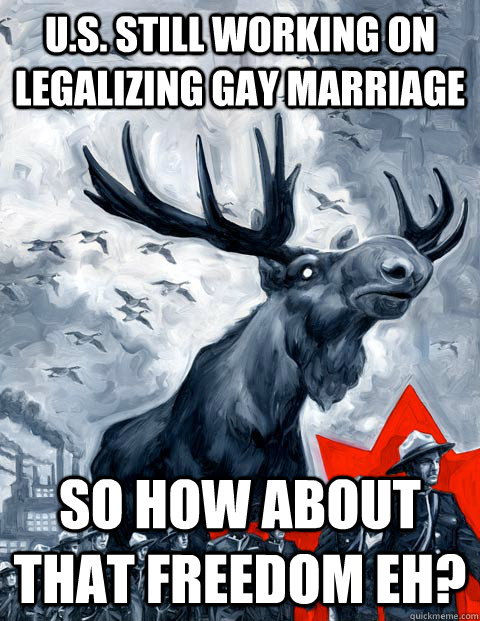 U.S. Still working on legalizing Gay Marriage So how about that freedom eh?  Vindictive Canadian Moose Overlord