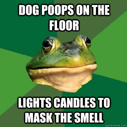 Dog poops on the floor Lights candles to mask the smell - Dog poops on the floor Lights candles to mask the smell  Foul Bachelor Frog
