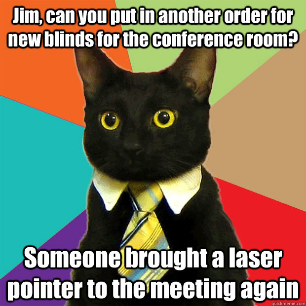 Jim, can you put in another order for new blinds for the conference room? Someone brought a laser pointer to the meeting again - Jim, can you put in another order for new blinds for the conference room? Someone brought a laser pointer to the meeting again  Business Cat