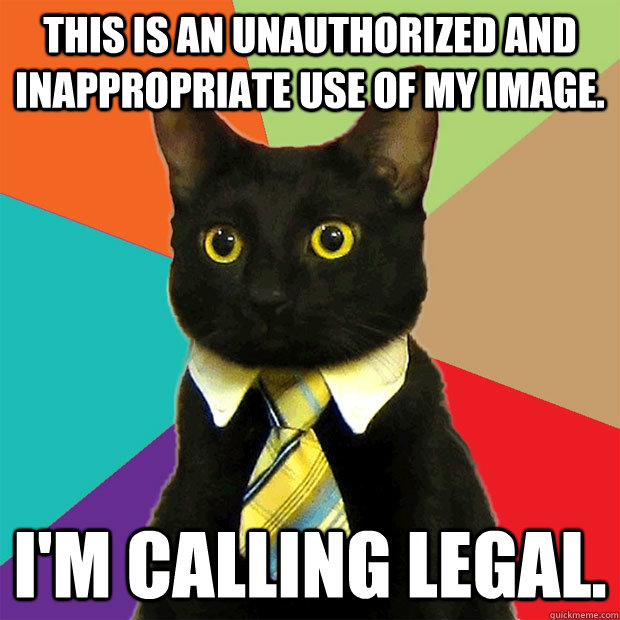this is an unauthorized and inappropriate use of my image. I'm calling legal.  Business Cat