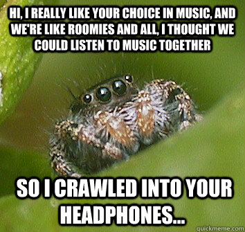 hi, I really like your choice in music, and we're like roomies and all, I thought we could listen to music together  so I crawled into your headphones... - hi, I really like your choice in music, and we're like roomies and all, I thought we could listen to music together  so I crawled into your headphones...  Misunderstood Spider