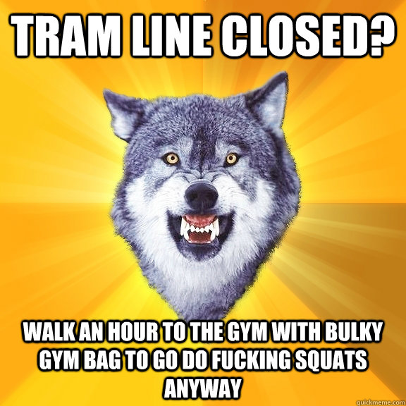Tram line closed? Walk an hour to the gym with bulky gym bag to go do fucking squats anyway - Tram line closed? Walk an hour to the gym with bulky gym bag to go do fucking squats anyway  Courage Wolf