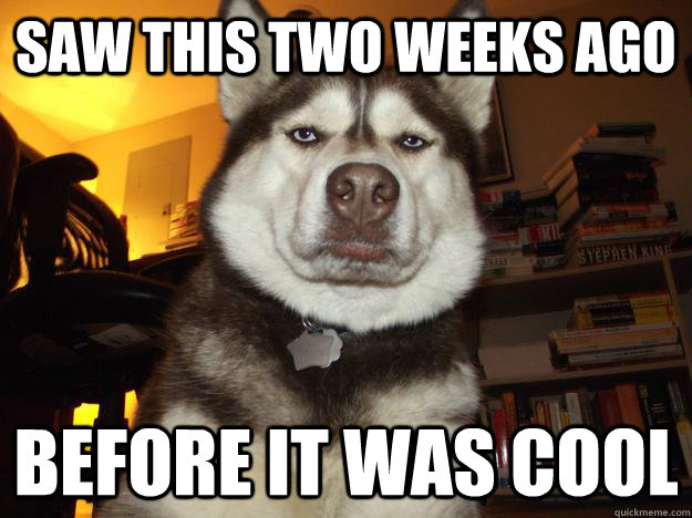 Saw this two weeks ago before it was cool - Saw this two weeks ago before it was cool  Hipster Husky