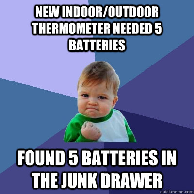 new indoor/outdoor thermometer needed 5 batteries found 5 batteries in the junk drawer - new indoor/outdoor thermometer needed 5 batteries found 5 batteries in the junk drawer  Success Kid