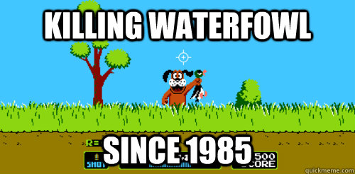 Killing waterfowl since 1985  Duck Hunt
