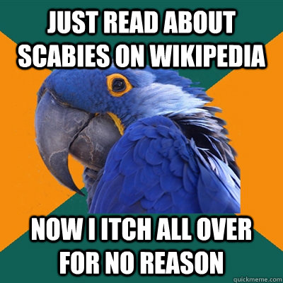Just read about scabies on Wikipedia now i itch all over for no reason - Just read about scabies on Wikipedia now i itch all over for no reason  Paranoid Parrot