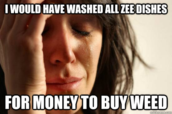 I would have washed all zee dishes for money to buy weed - I would have washed all zee dishes for money to buy weed  First World Problems