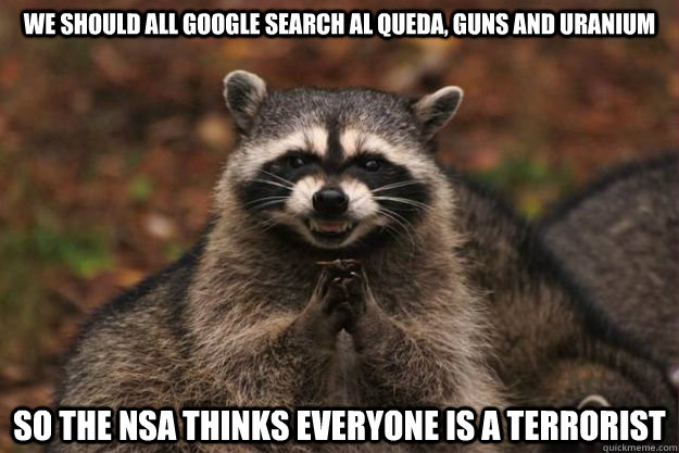 We should all google search Al Queda, Guns and Uranium So the NSA thinks everyone is a terrorist