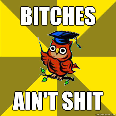 bitches ain't shit  Observational Owl