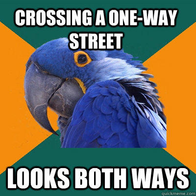 Crossing a one-way street Looks both ways - Crossing a one-way street Looks both ways  Paranoid Parrot