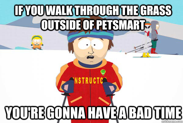If you walk through the grass outside of Petsmart You're gonna have a bad time - If you walk through the grass outside of Petsmart You're gonna have a bad time  Super Cool Ski Instructor