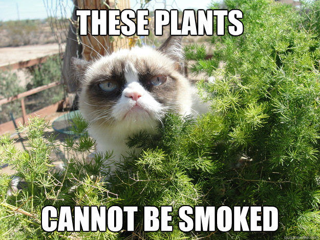 these plants cannot be smoked - these plants cannot be smoked  Misc