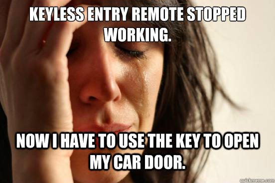 Keyless entry remote stopped working. Now I have to use the key to open my car door. - Keyless entry remote stopped working. Now I have to use the key to open my car door.  First World Problems
