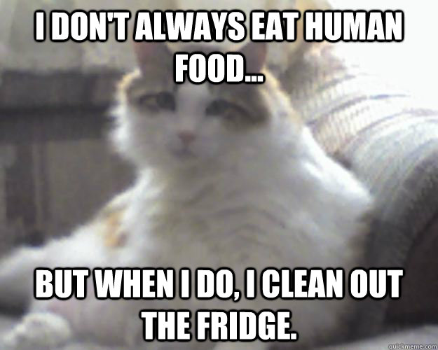 I don't always eat Human food... But when I do, I clean out the fridge.