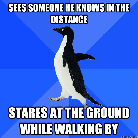 sees someone he knows in the distance stares at the ground while walking by - sees someone he knows in the distance stares at the ground while walking by  Socially Awkward Penguin