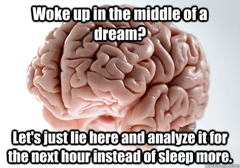 Woke up in the middle of a dream? Let's just lie here and analyze it for the next hour instead of sleep more. - Woke up in the middle of a dream? Let's just lie here and analyze it for the next hour instead of sleep more.  Scumbag Brain