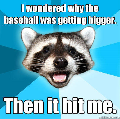 I wondered why the baseball was getting bigger. Then it hit me. - I wondered why the baseball was getting bigger. Then it hit me.  Lame Pun Coon